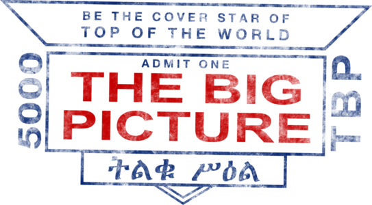 8-Big-Picture-G
